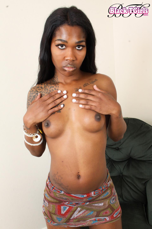 caramel bombshell black tgirl gallery -