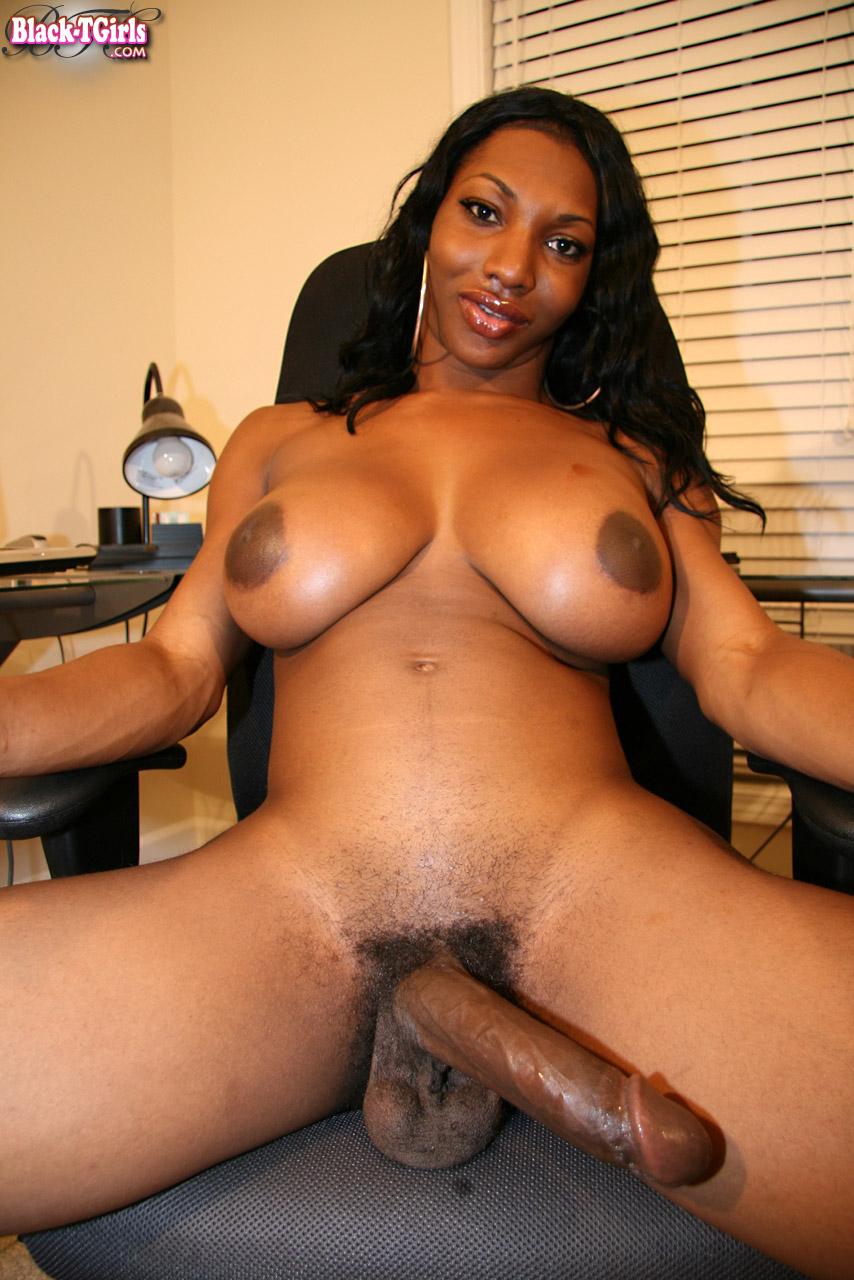 shemale natasha black