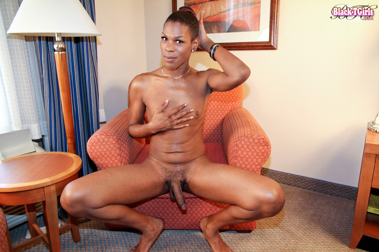 from Alvin baltimore transsexuals