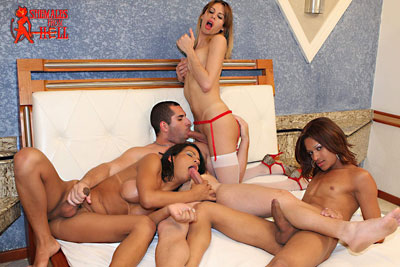 shemales from hell orgy02x Shemales From Hell Had a RAUNCHY TRANNY ORGY...