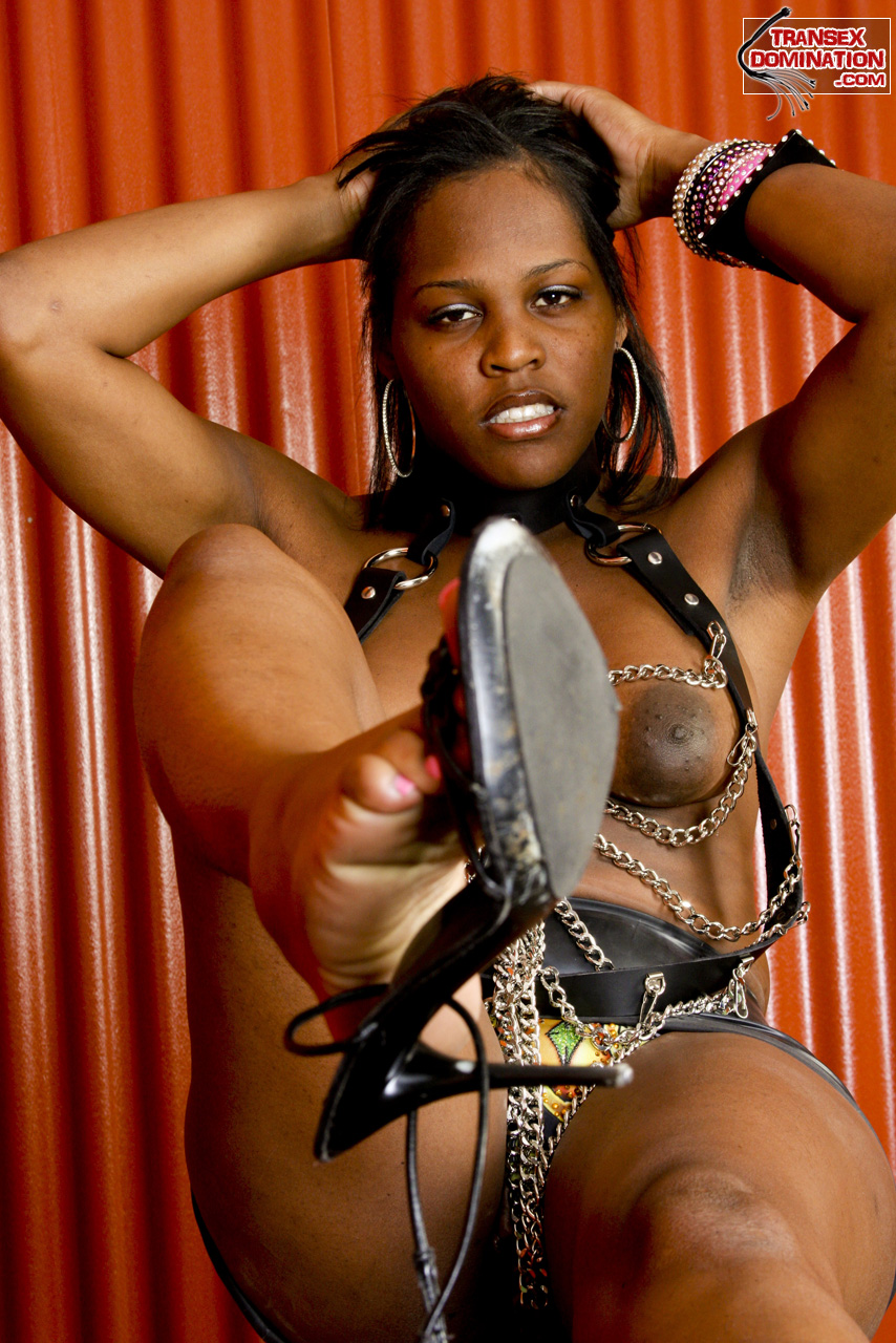 black shemale mistress Mistress Brownie Demands You Worship Her Feet!