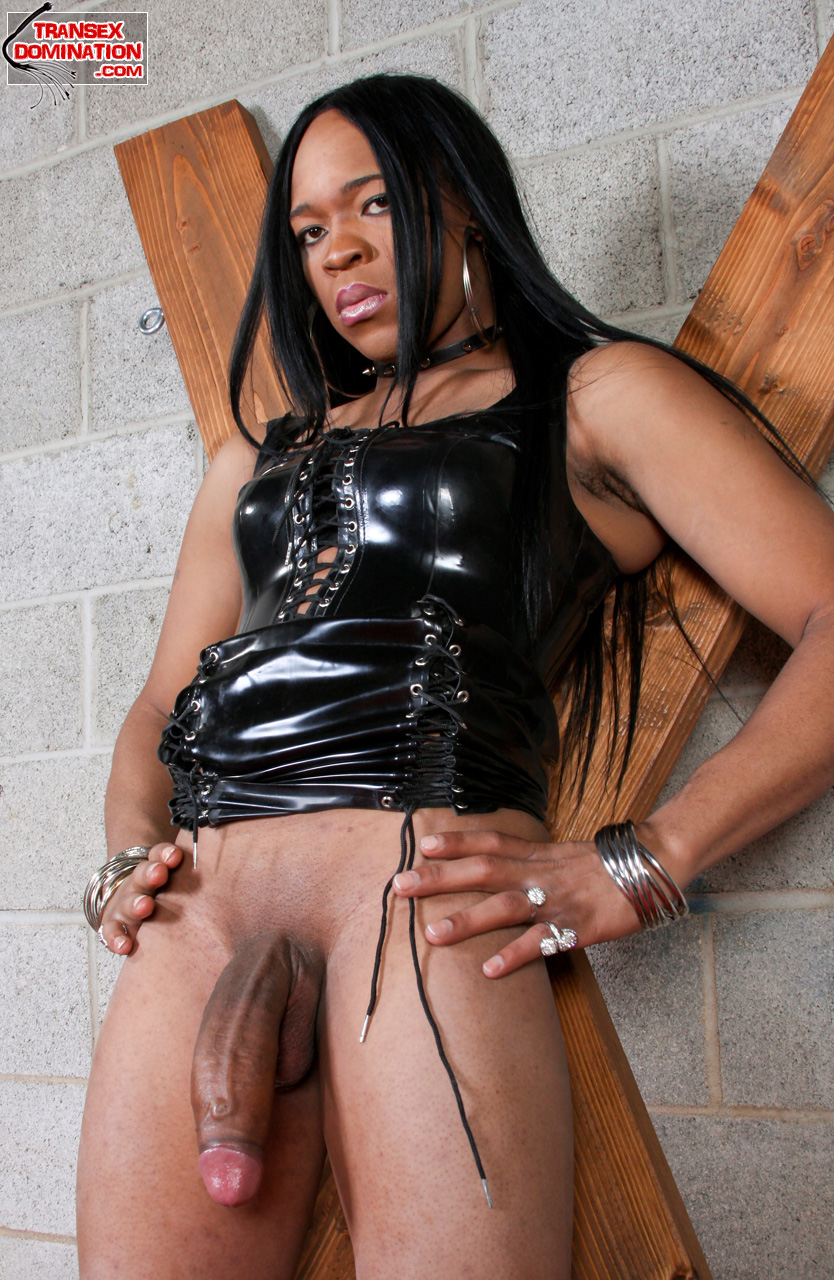 black shemale mistress