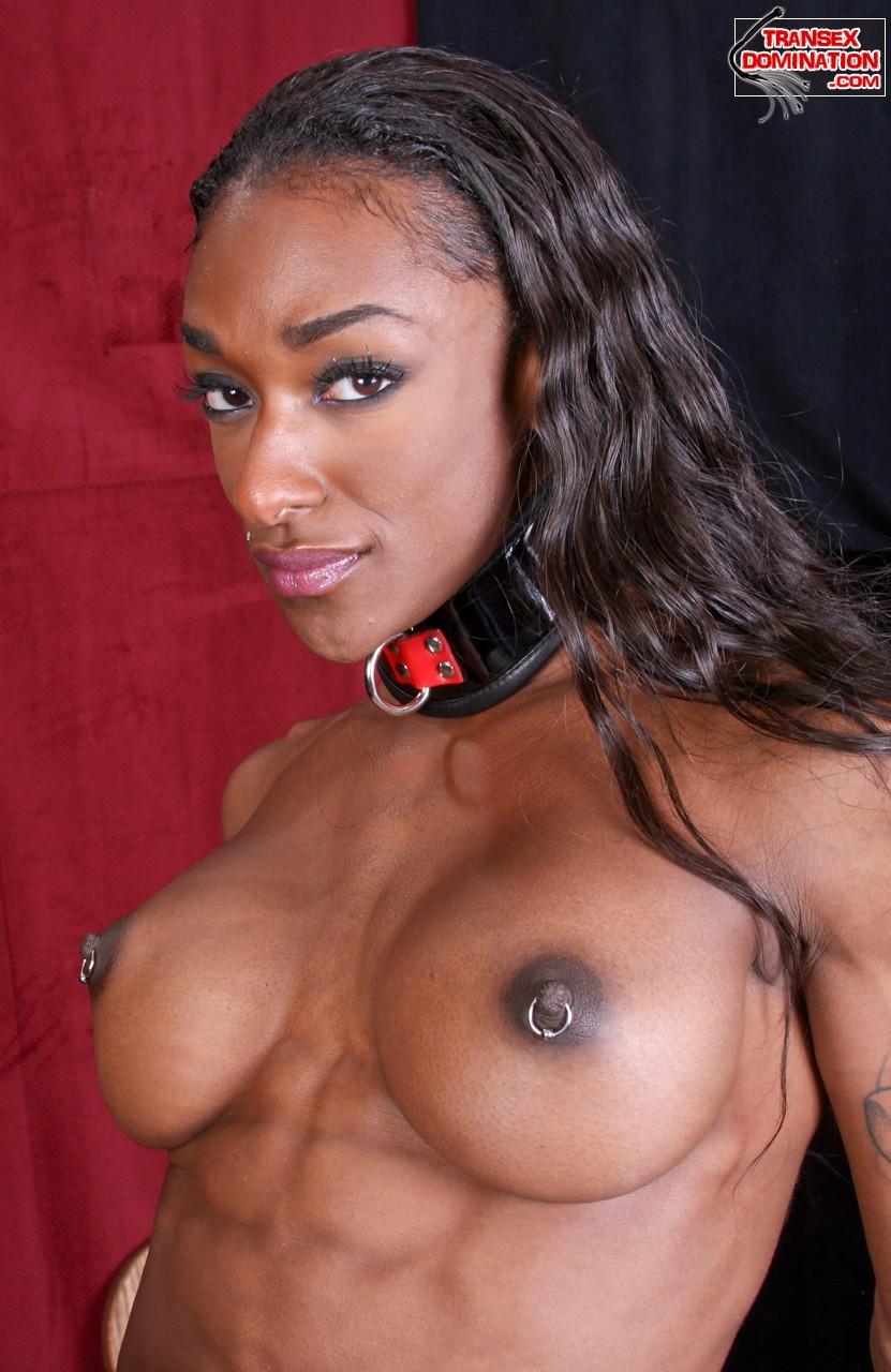 Black female porn stars getting fucked