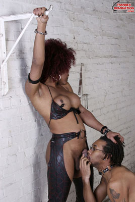 tsdcaressx05 Mistress Saki Wants to be Adored, Mistress Caress Has No Problem Punishing You