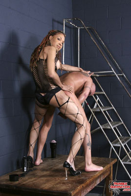 vanilla1099x Mistress Vanilla Rules the Dungeon with her HUGE Cock!