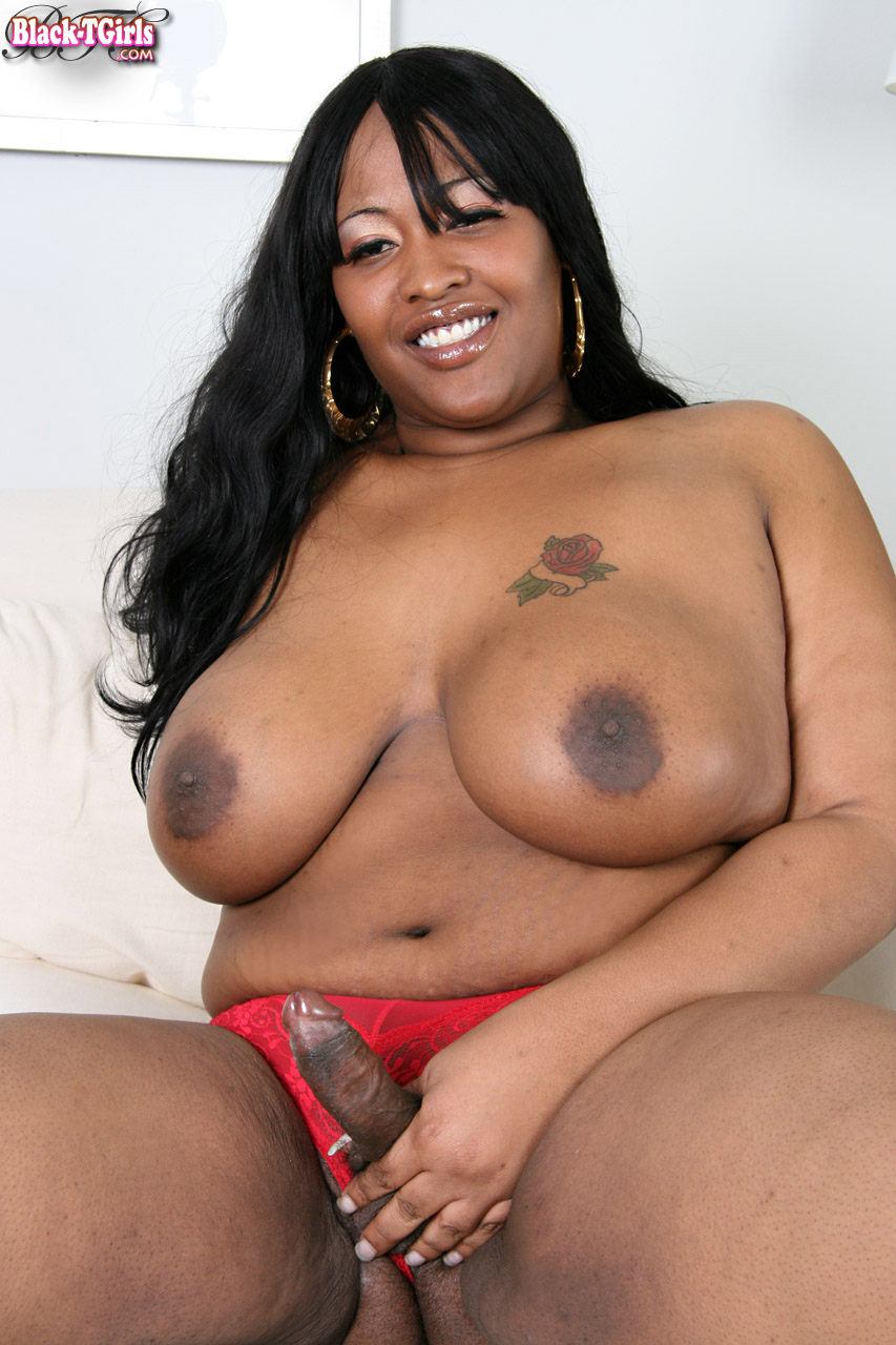 dating black bbw shemale