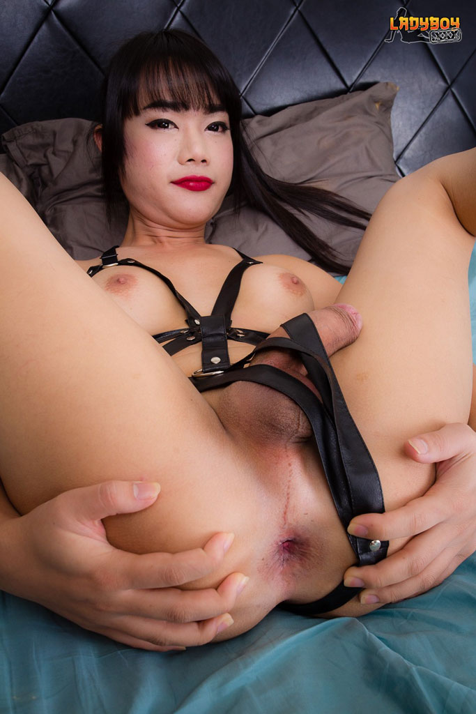 boundage bdsm thailand sex forum