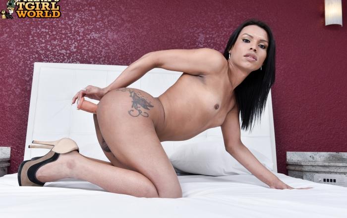Natasha Guedes' hot debut on Frank's TGirl World!