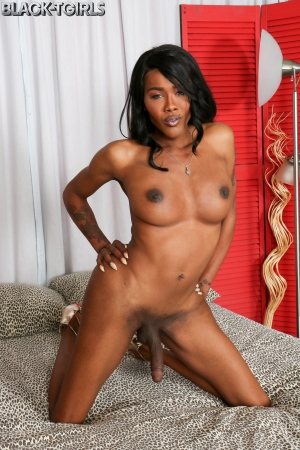 Coco Black TGirls