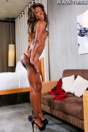 Ashley Banks Black TGirls