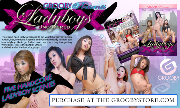 Grooby, Exquisite Release Newest DVD, Ladyboys Uncovered XXX