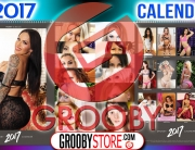 grooby2017calendar-promographic