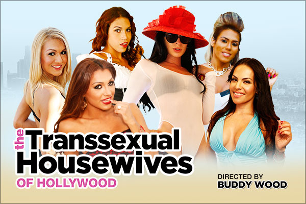 Review: The Transsexual Housewives of Hollywood
