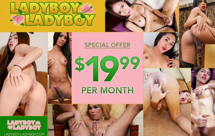 Revamped Ladyboy-Ladyboy Launches at $19.99 a Month!