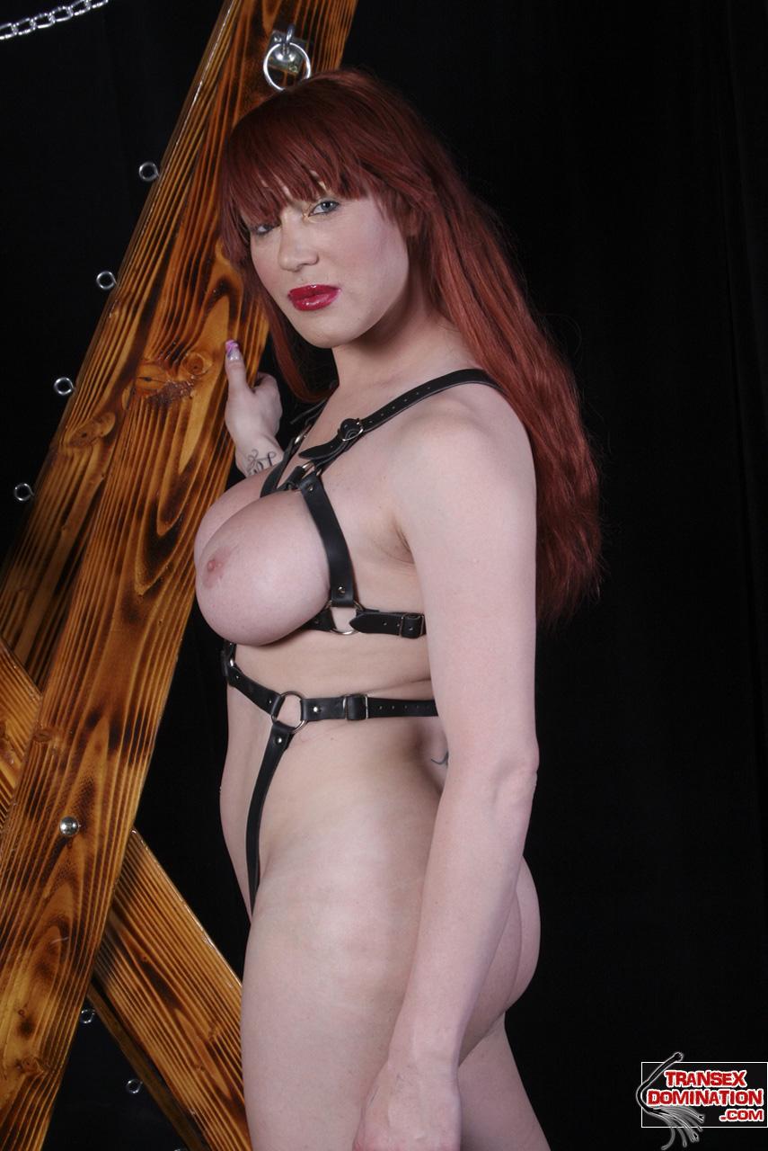 Ashemaletube Trann Porn shemale bianca the dominatrix - live web cam naked